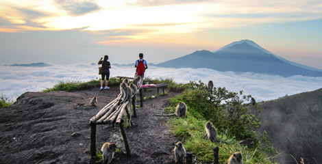 mount-batur-sunrise-trekking-and-volcano-exploration-in-denpasar-210685